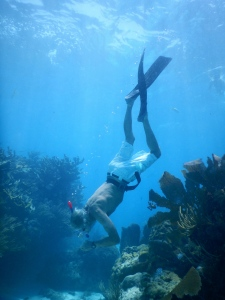 photo of Dr. DeVault snorkeling